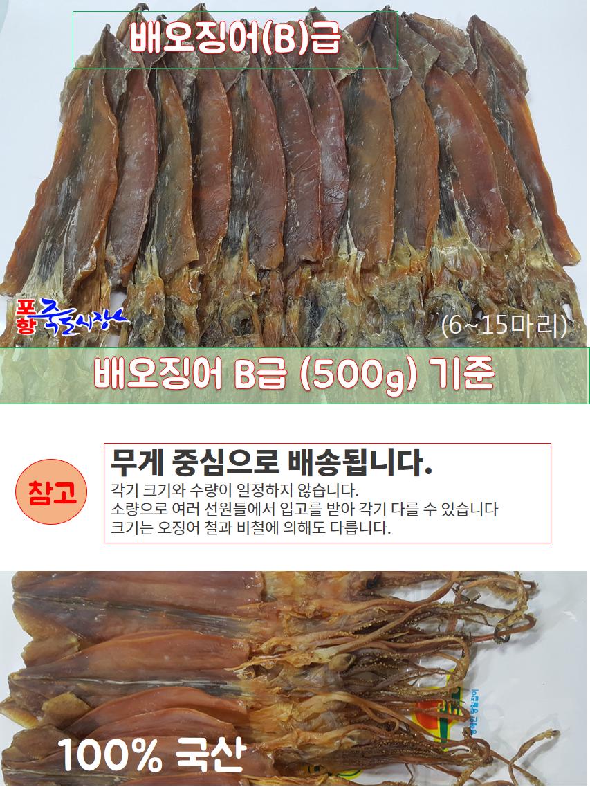 배오징어B급01.png