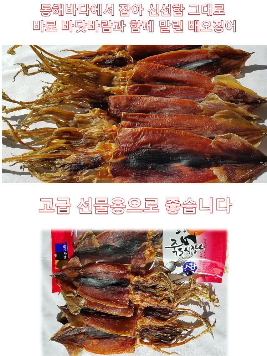 배오징어2kg-02.png