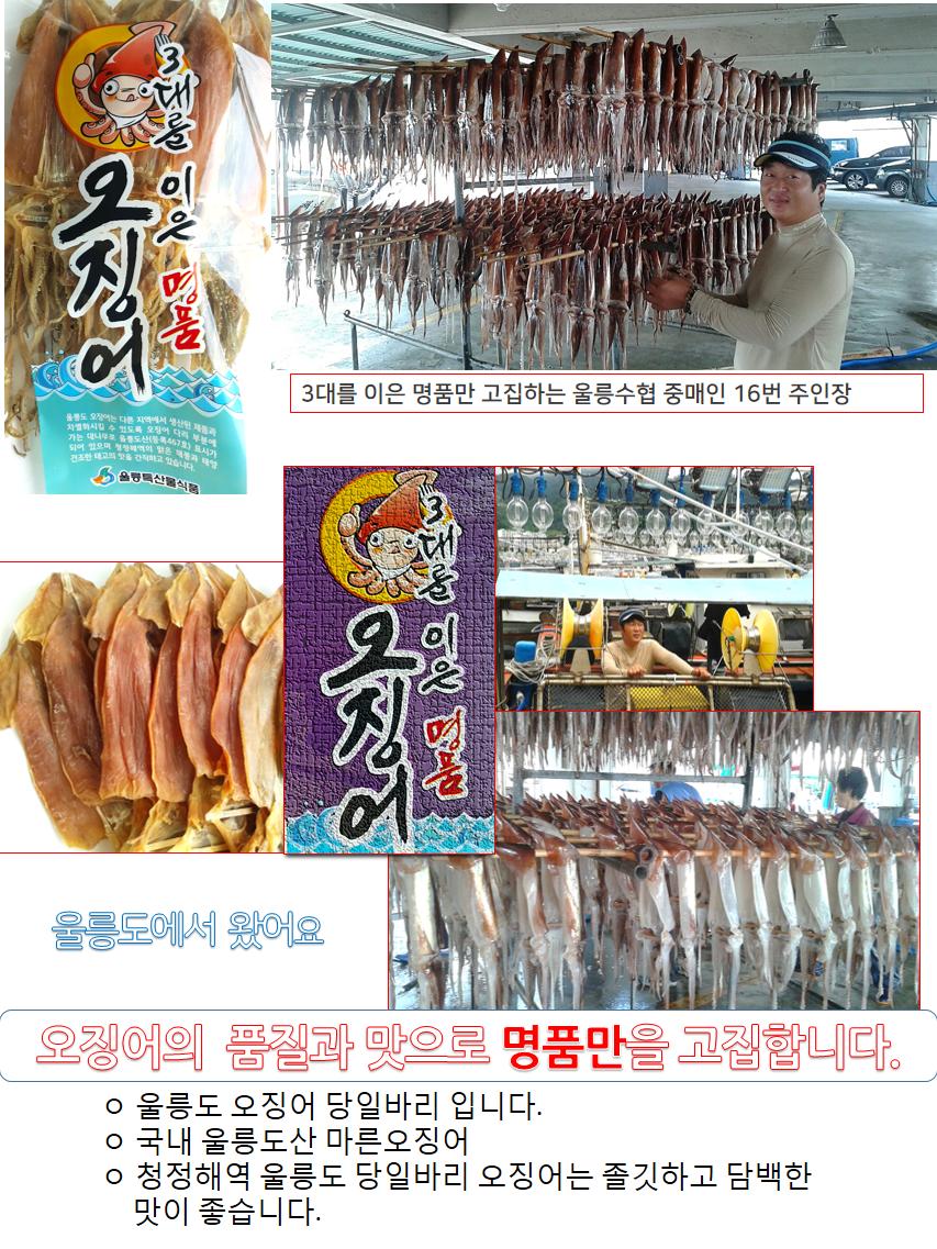 울릉도(대)10-02.png