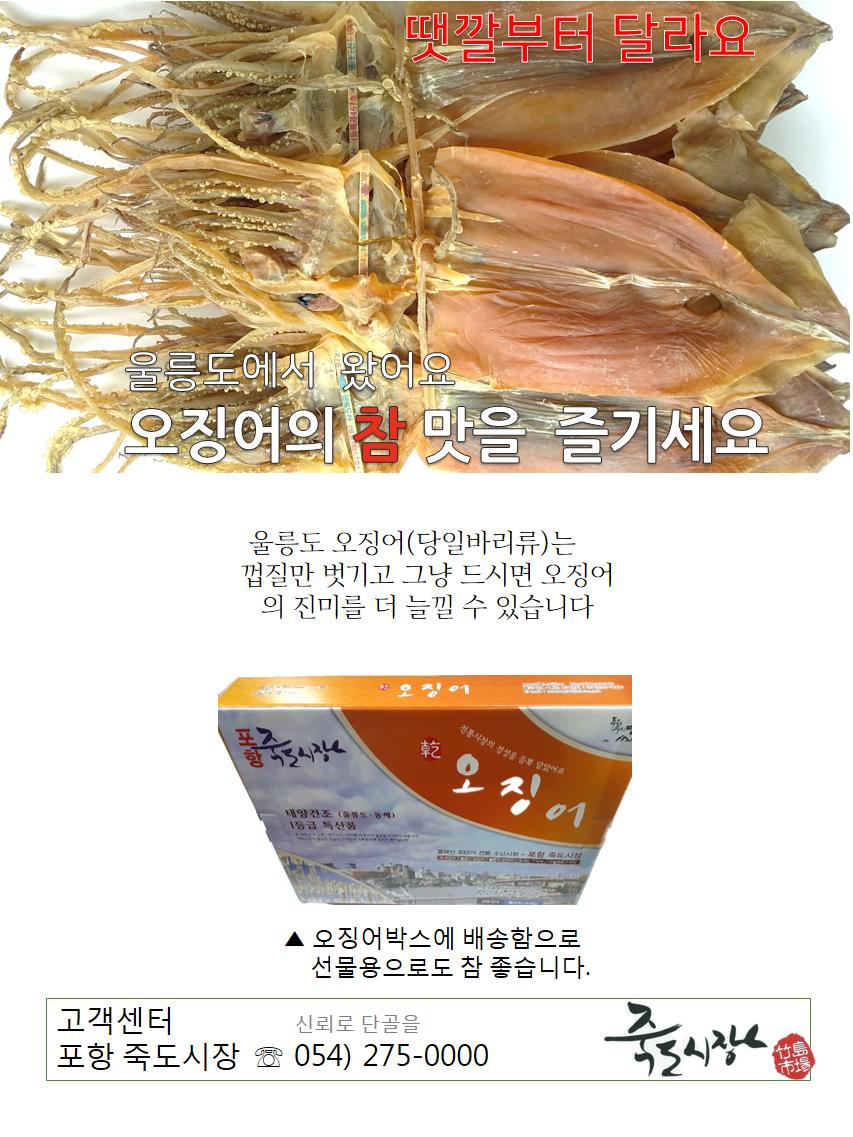 울릉도(대)10-03.png