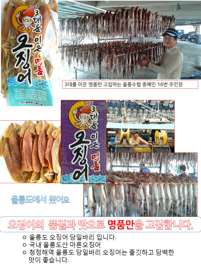 울릉도(특)10-2.png