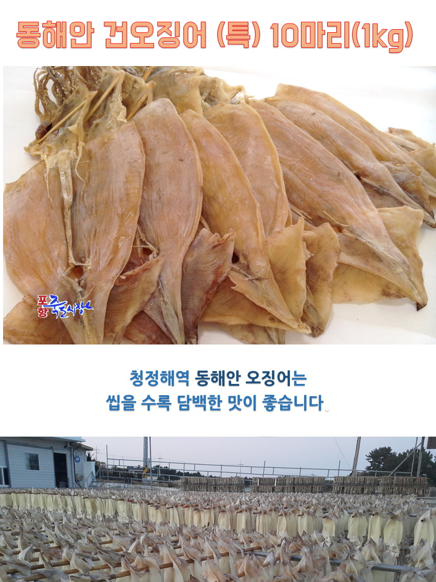 건오징어(특대10)상세-1.png