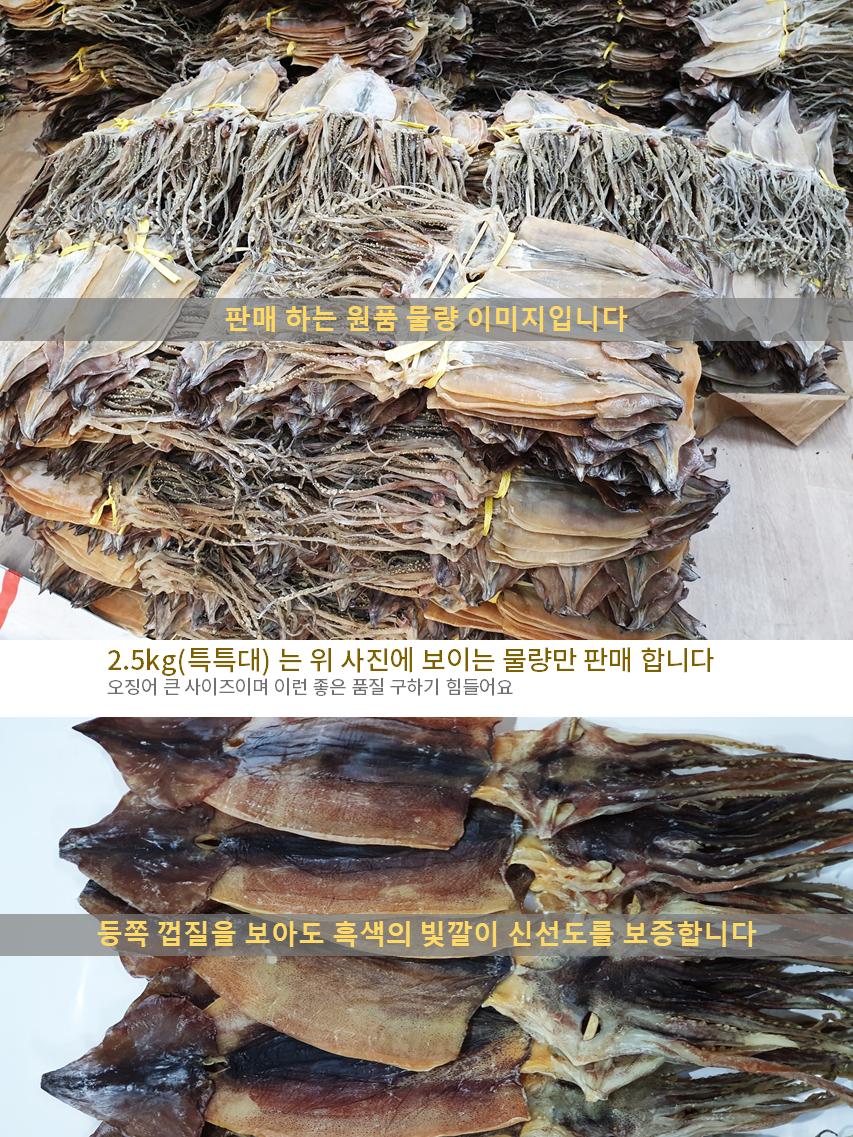 건오징어(특특대)10-상세02.png