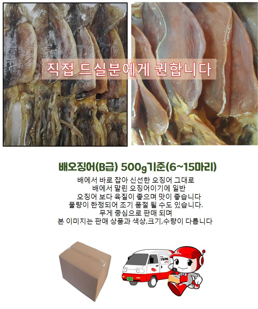 배오징어 B급 500g 기준(6~15마리내외).png