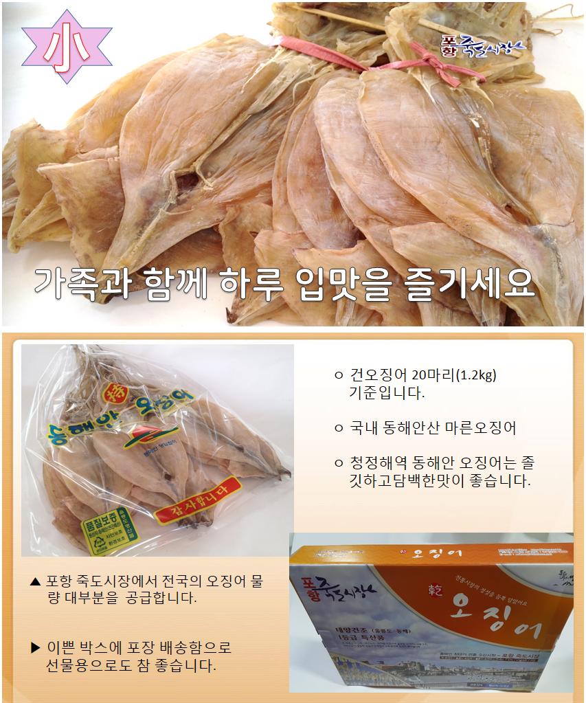 오징어1축(소)20마리 1.2kg동해안 오징어.png