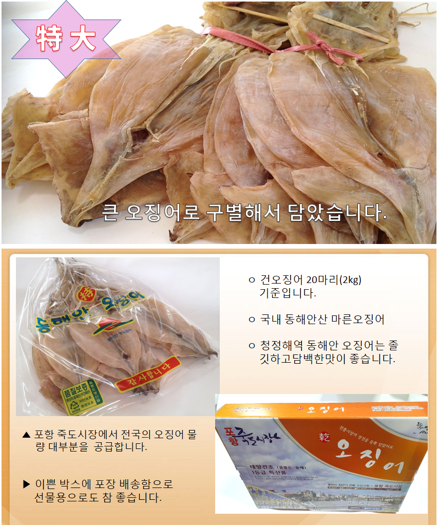 오징어1축(특대)20마리 2kg동해안 오징어.png