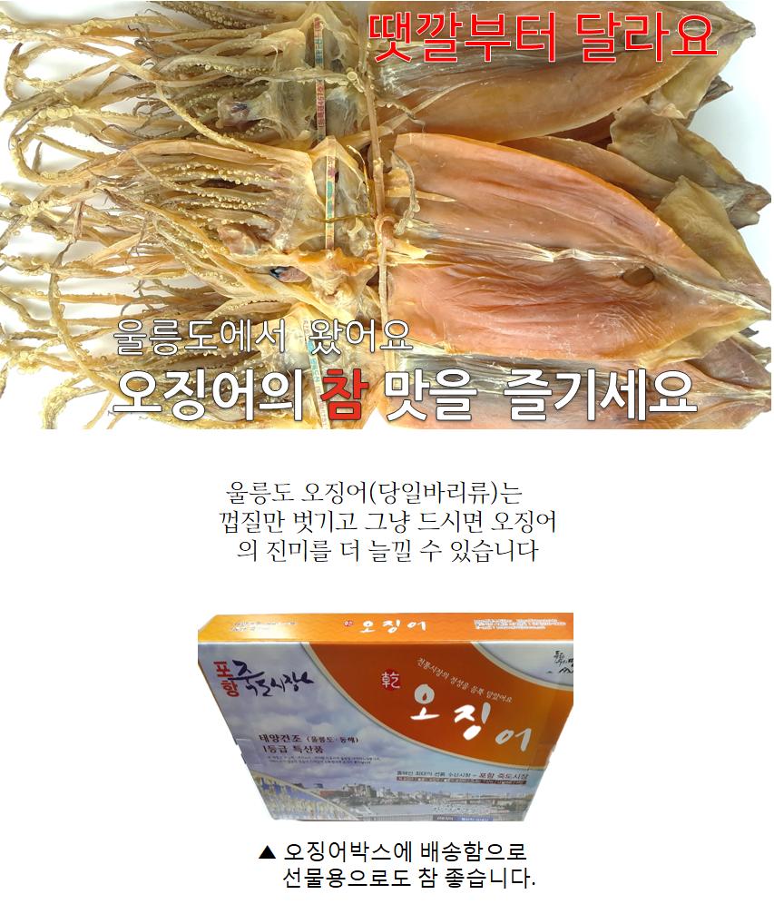 울릉도 오징어(소)1축1.2kg20마리.png