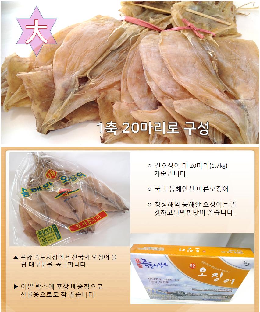 오징어1축(대)20마리 1.7kg동해안 오징어.png