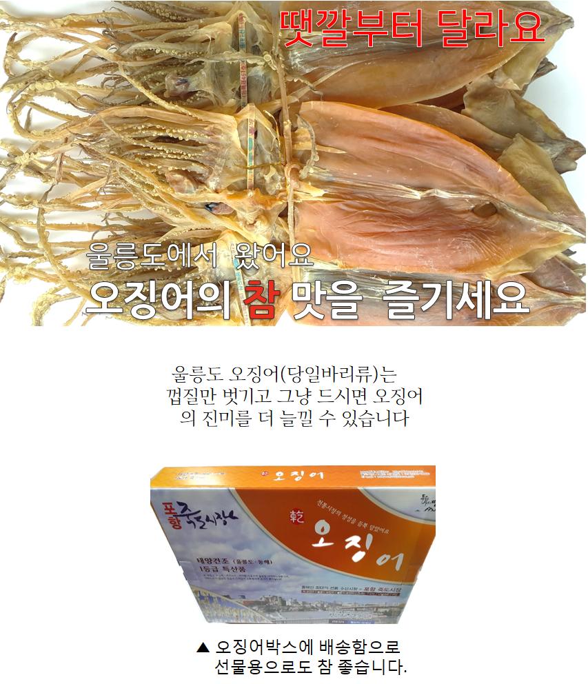울릉도 오징어(소)10마리(600g).png