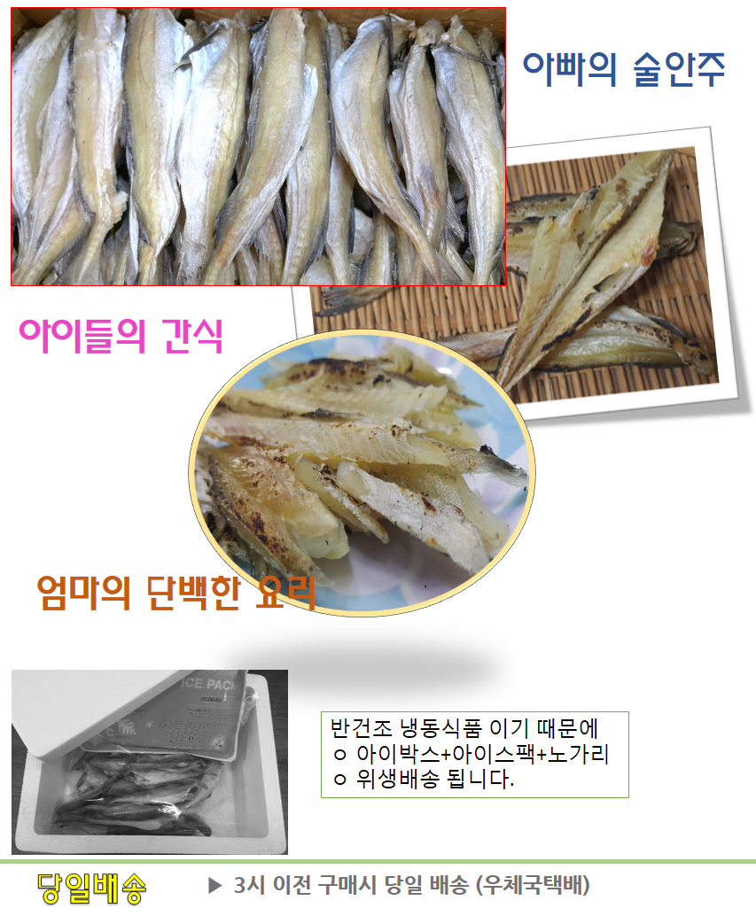 반건조 두절 조미 노가리 1kg.png