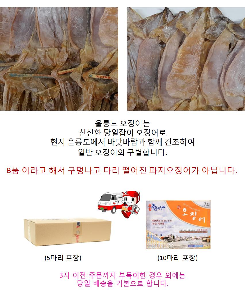 울릉도 오징오(중)5마리(370g).png