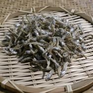 소멸치(가이리)1박스 1.5kg 뽁음멸치 4~4,5cm 멸치 포항 죽도시장