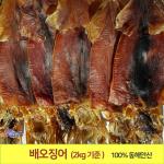 배오징어 2.0kg(최상급) 1축(20마리내외) 배에서 말린 오징어 무료배송 포항 죽도시장