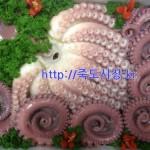 문어 5kg (생물문어) 참문어 이바지 행사 선물 포항 죽도시장