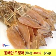 오징어 1축 (특大) (20마리) 2kg 동해안 건오징어 마른오징어 포항 죽도시장