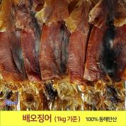 배오징어 (1kg기준) 최상급 배에서 말린 오징어(9~12마리) 무료배송 포항 죽도시장