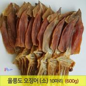 울릉도 오징어 (소) 10마리(600g기준) 당일바리 마른 오징어 건오징어 포항 죽도시장