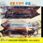 포항 죽도시장 급냉 생물 오징어(大) 2마리(700g내외) 통마리 급냉오징어/손질한 급냉오징어 / 횟감 순대 피데기 반찬류