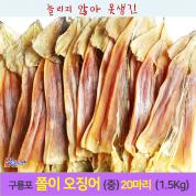 쫄이 당일잡이 오징어(중)1.5kg 1축(20마리)/당일바리/ 마른 오징어 / 당일바리/ 동해안산/포항 죽도시장